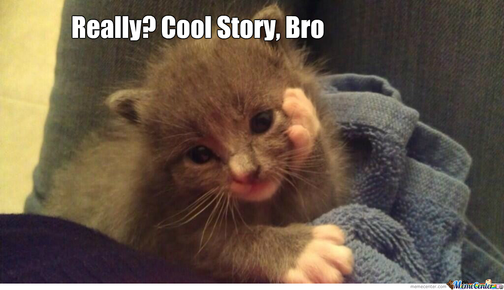Cool Story Kitty
