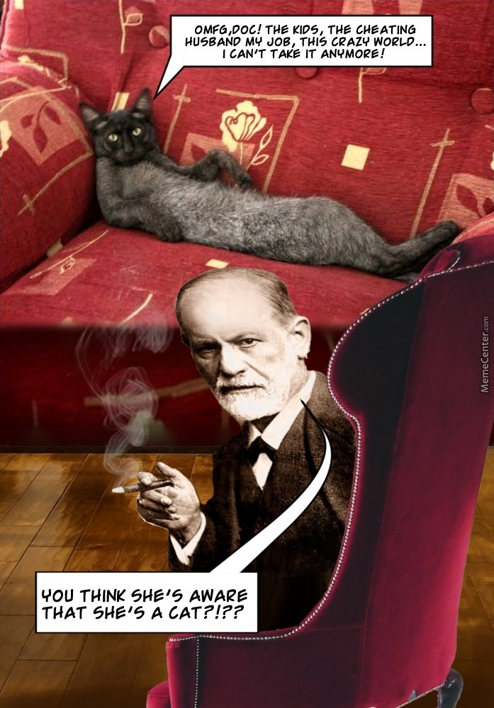 was freud crazy or correct Over 650 pages, professor crews builds up a portrait of freud as the most vile, medically useless, misogynistic, snobbish, petulant, jealous, crazy, sex-obsessed creep you could ever hope not to look up at from a couch — and a man whose 'treatment' you wouldn't wish on your worst enemy.