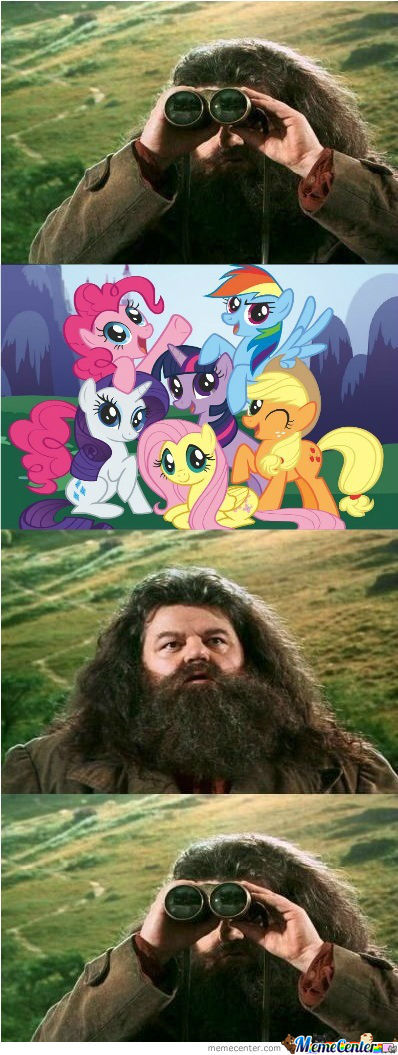 Dafuq Hagrid Meme? Lets Make It Happen!!