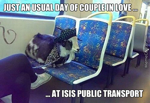 Daily Routine Of Romantic Couple