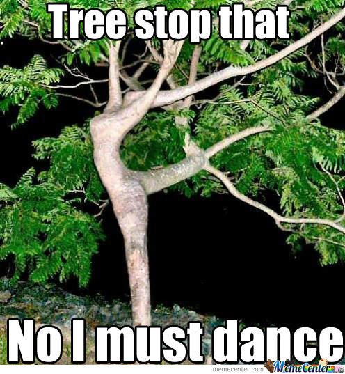 Darn You Dancing Tree