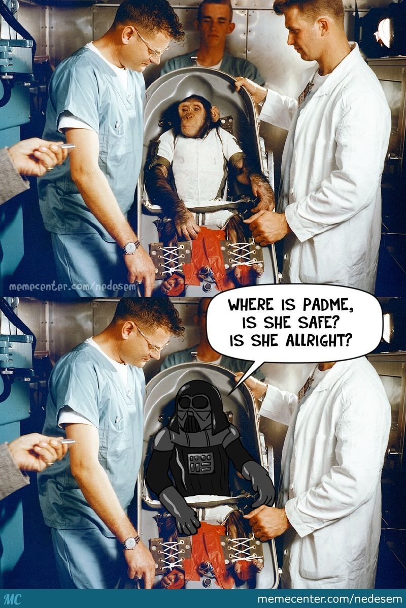 Darth Chimp Rises