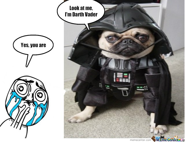 Darth Puppy