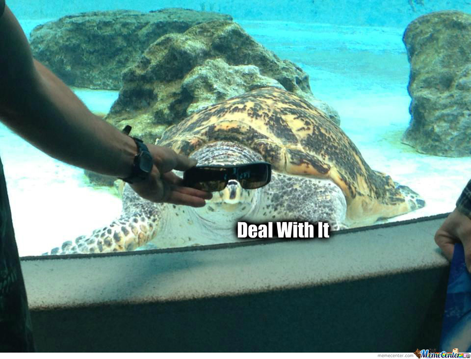 Deal With It Turtle