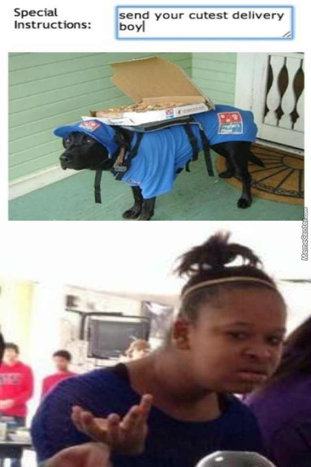 Delivery Doge