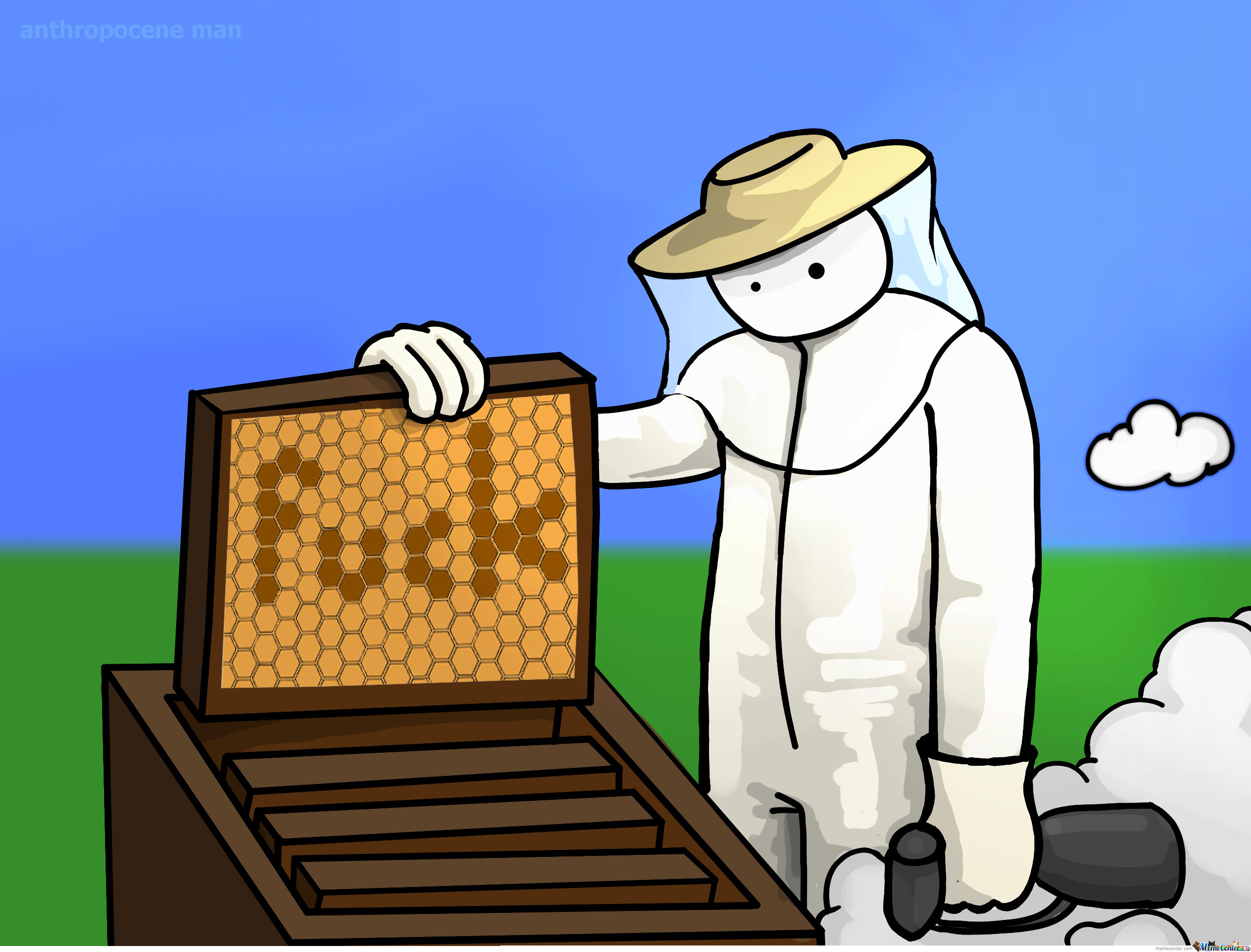 Disappearance Of Honeybees