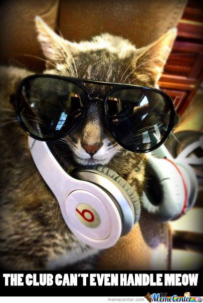 Dj Whiskers