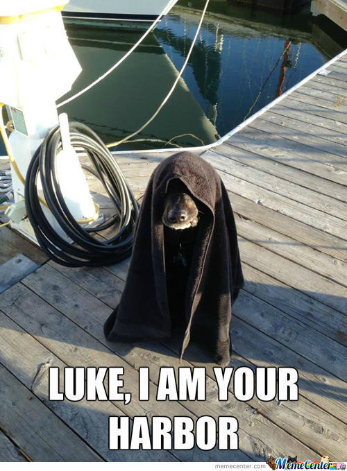 Dock The Force