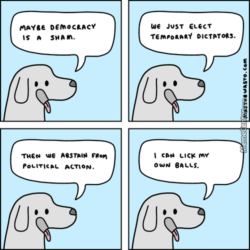 Dog Thinks Politics