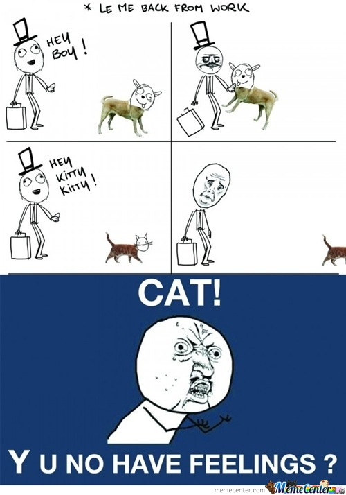 Dog Vs. Cat!
