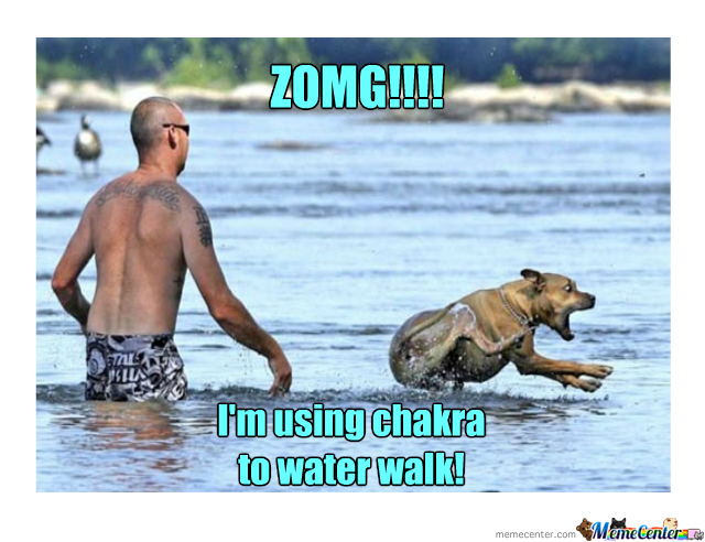 Dog Water Walking