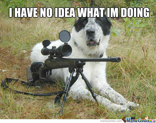 Dog With A Gun