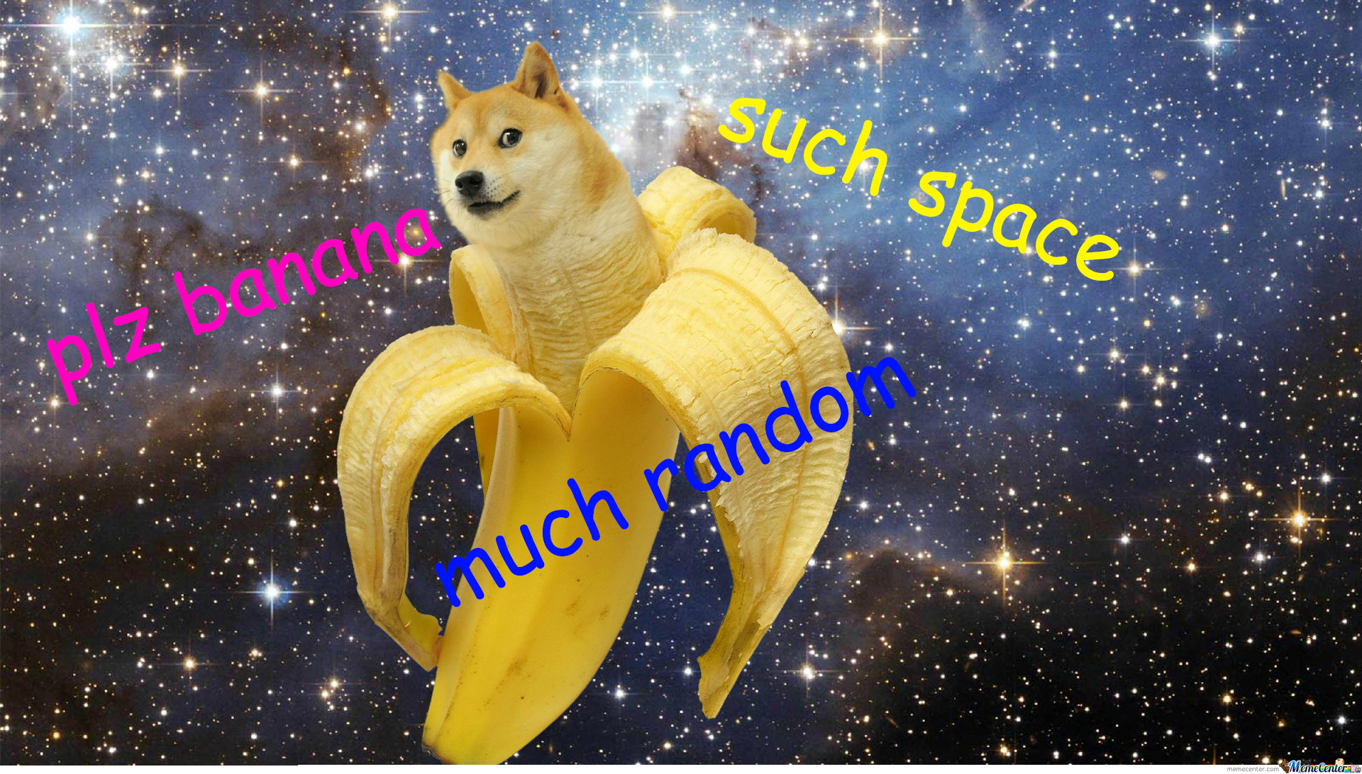 the gallery for gt doge shiba wallpaper