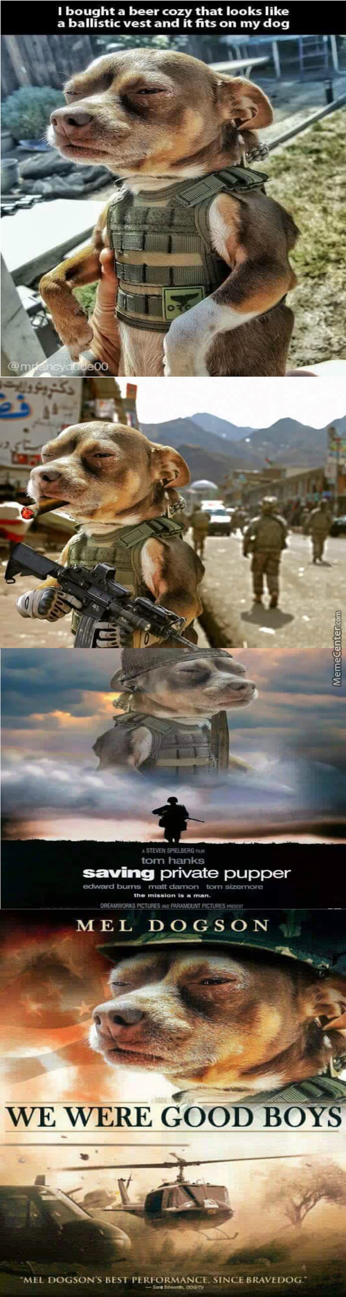 Dogs Of War (It Turns Out That Little Yap-Yaps Do Have Their Uses)