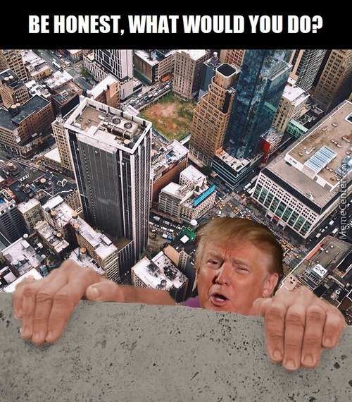 Donald Trump - Be Honest What Would You Do?