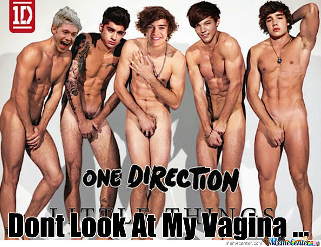 Dont Look At My Vagina -1D