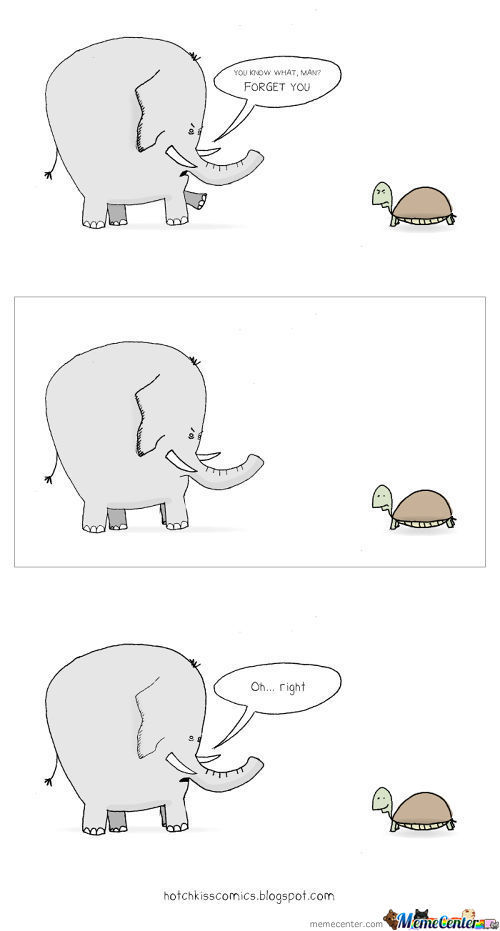 Elephants Can't Help But Hold A Grudge