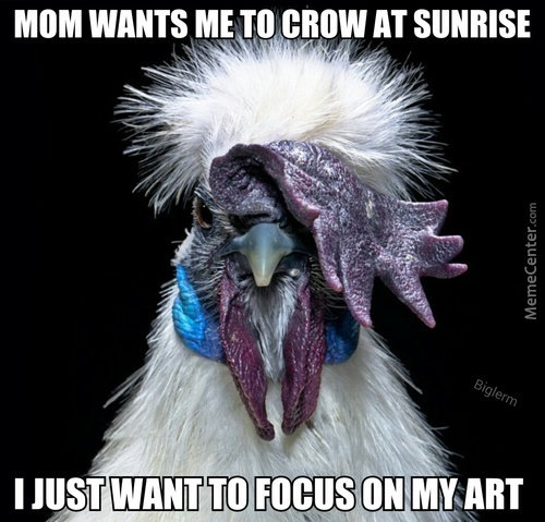 Emo Rooster Doesn't Need Your Judgment
