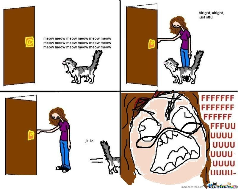 Epic Cat Rage