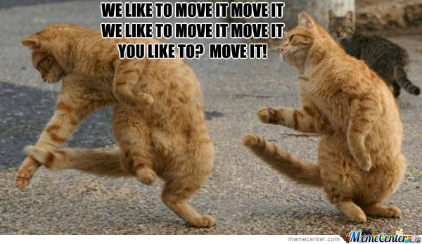 Epic Cats Are Dancing