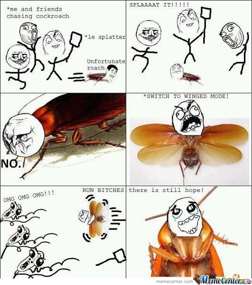 Epic Cockroach Is Epic
