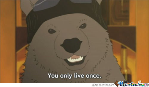 Even A Bear Knows That