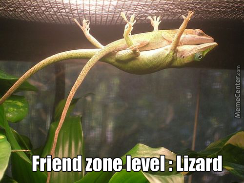 Even The Animals Are Friend Zoned.