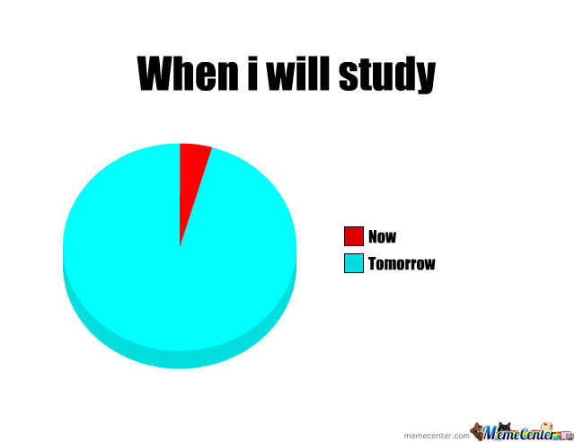 Every Day I Study
