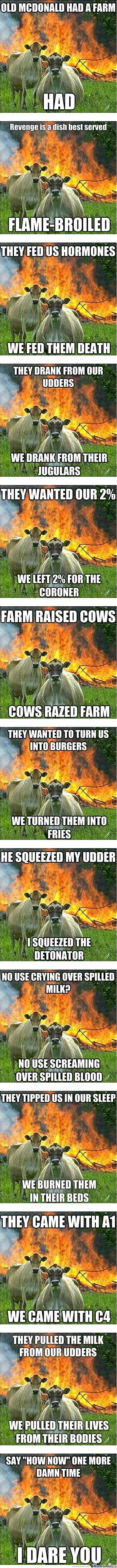 Evil Cows Competition