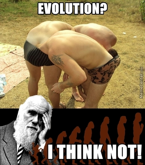 Evolution Theory: Busted!