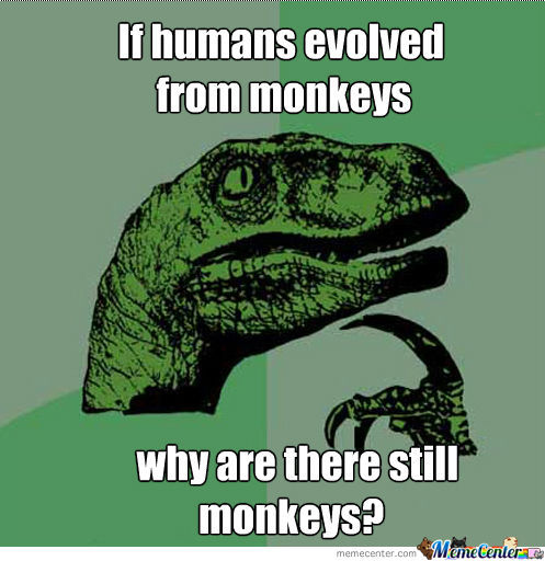 Evolution You Dumbass!