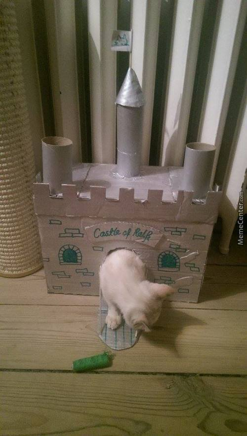 Evry Kitty Needs A Castle
