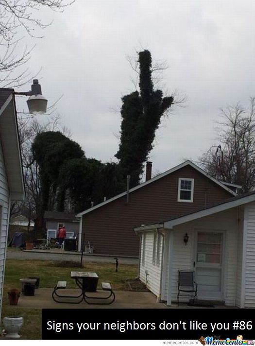 F**king Neighbours