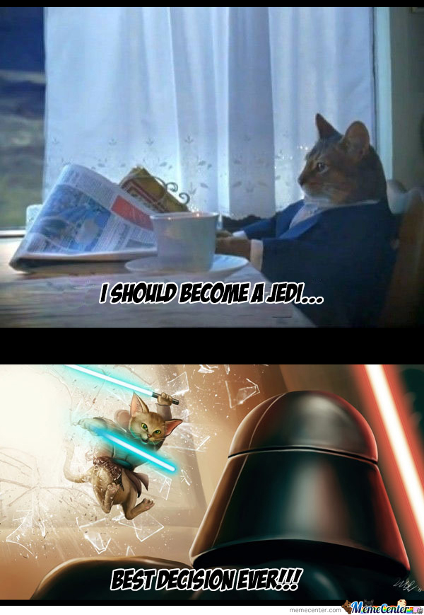 F.y.i There Is A Cat Race In Star Wars