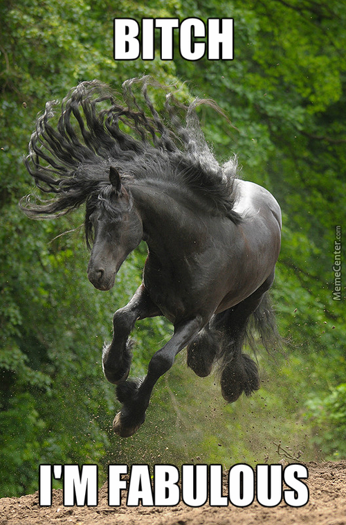 Fabulous Horse Is Fabulous