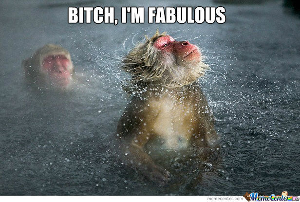 Fabulous Monkey