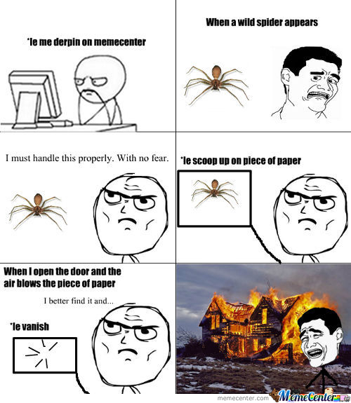 Facing A Spider Like A Man