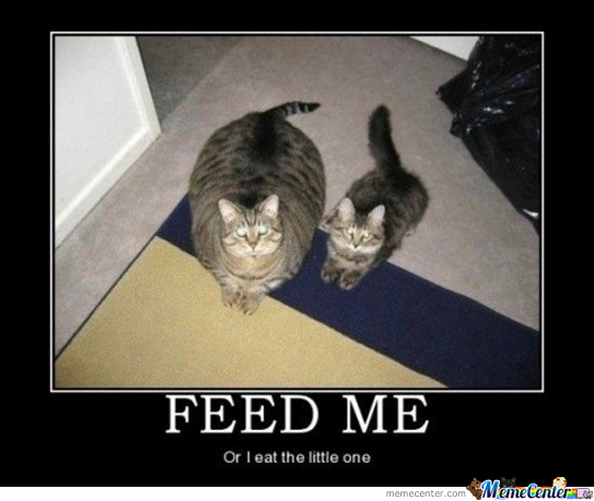 Feed It, Quick!