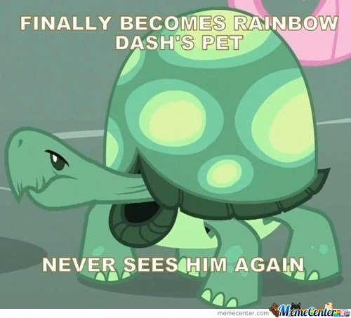 Finally becomes rainbow dash's pet