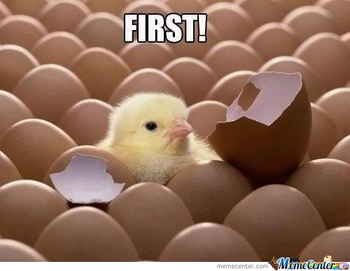 First Chick