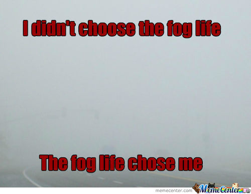 Fog Life...(Another Original Bit*hes!!!)