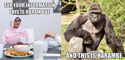 For Your Information, Harambae