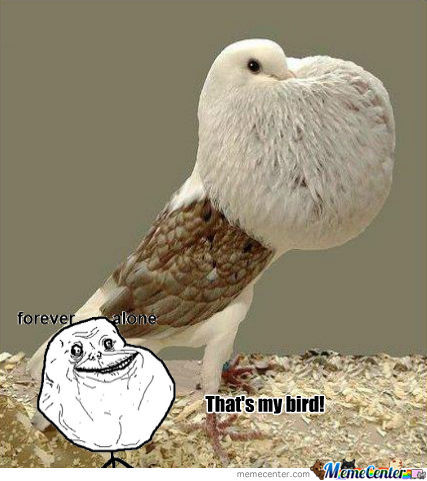 Forever Alone's New Pet