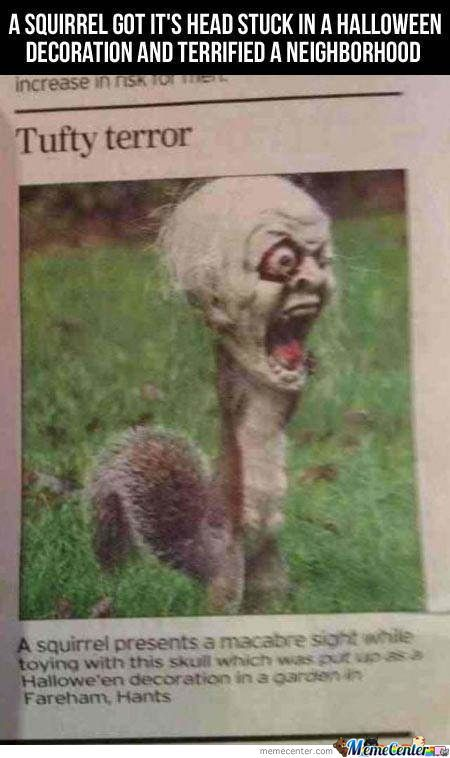 Freaky Troll Squirrel