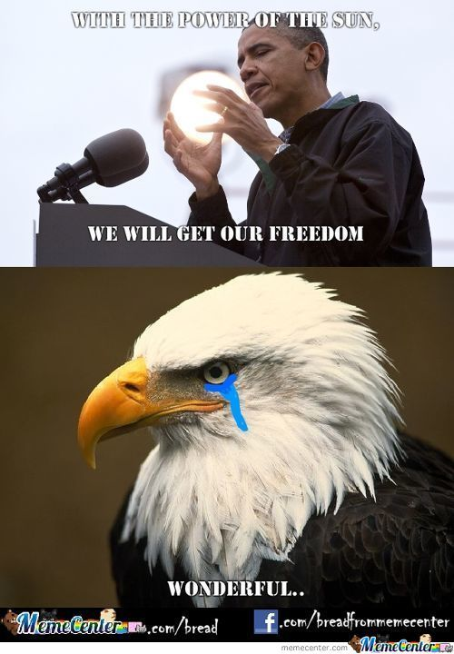 Freedom Eagle Approves..