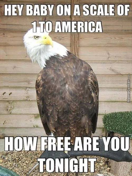 -Freedom Intensifies-