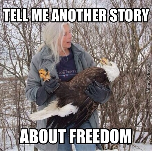 Freedom Tales.