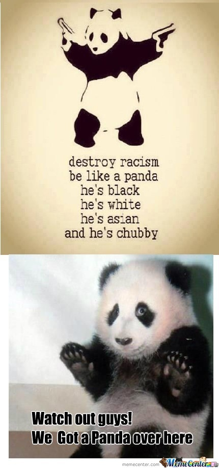 From Now I Am A Panda