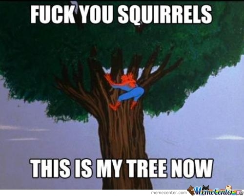 Fuck Off Squirrels