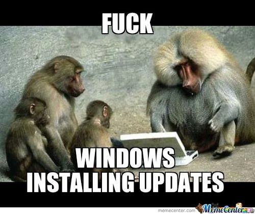 Fuck Windows Installing Updates
